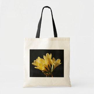 Fiebre de la primavera bolsas de mano