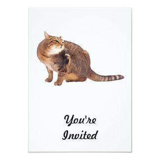 """Fiebre del rasguño de gato invitación 5"""" x 7"""""""