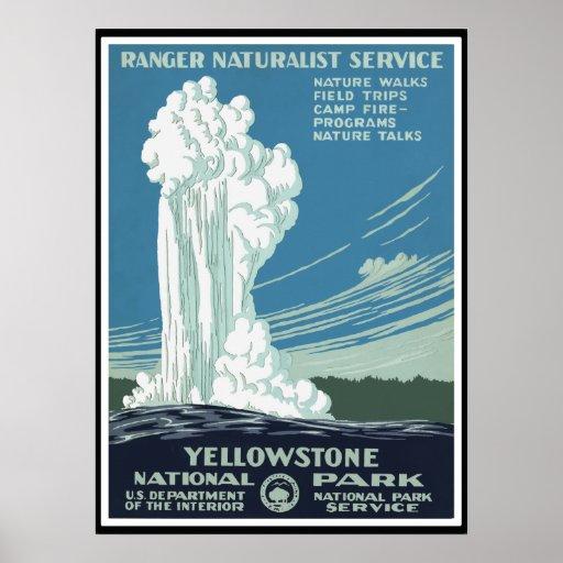 Fiel viejo - Yellowstone Póster