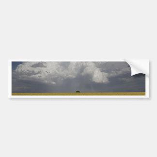 Field and storm bumper sticker