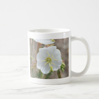 Field Bindweed Coffee Mugs