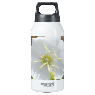 Field Bindweed SIGG Thermo 0.3L Insulated Bottle