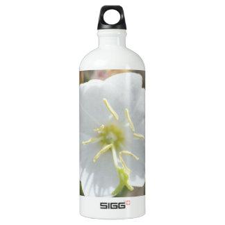 Field Bindweed SIGG Traveler 1.0L Water Bottle