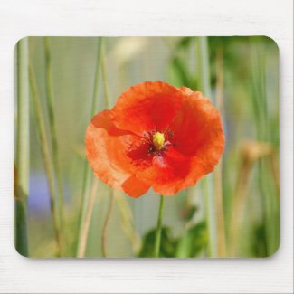 Field edge OF A corn field with talk poppies - Mouse Pad