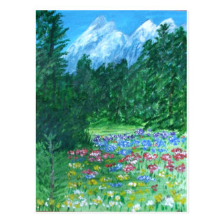 Field Flowers in a Rocky Mountain Meadow Postcard