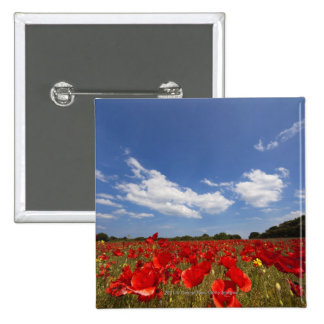 Field Full Of Red Flowers 2 Inch Square Button