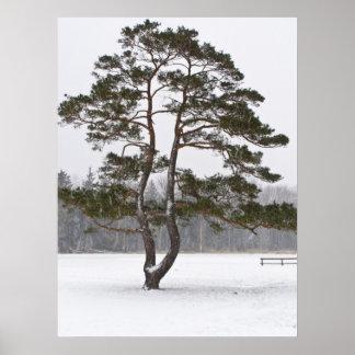 Field Goal Tree Poster