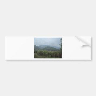field grassland sky bumper sticker