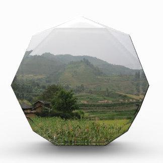 field mountain tree grass sky acrylic award