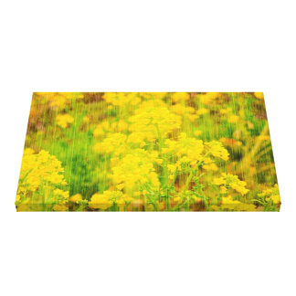 Field Mustard Flowers with Wooden Planks Overlay Canvas Print