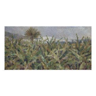 Field of Banana Trees by Pierre-Auguste Renoir Card