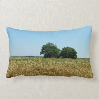 Field of Barley in Cornwall Photograph Pillow