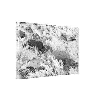 Field of Basalt Canvas Print
