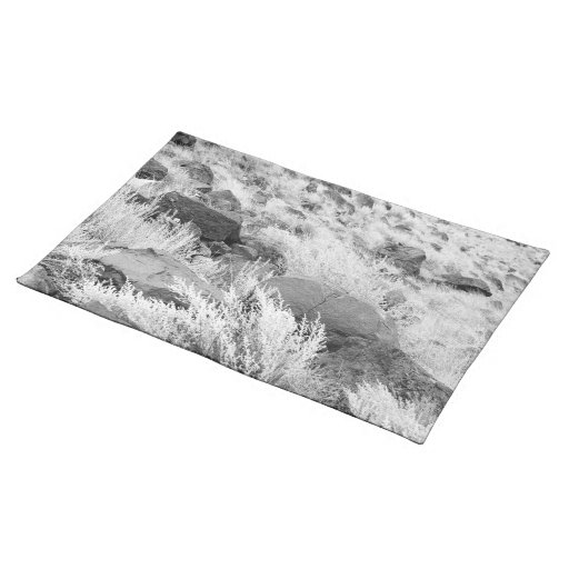 Field of Basalt Cloth Placemat