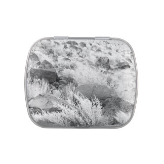 Field of Basalt Jelly Belly Candy Tins