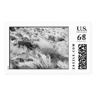 Field of Basalt – Large stamp