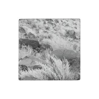 Field of Basalt Stone Magnet