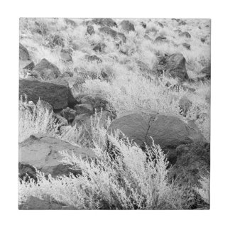 Field of Basalt Small Square Tile
