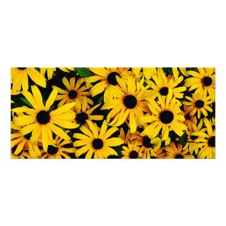Field of Black-Eyed Susans Rack Card