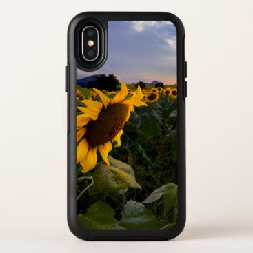 Field of Blooming Sunflowers OtterBox Symmetry iPhone X Case