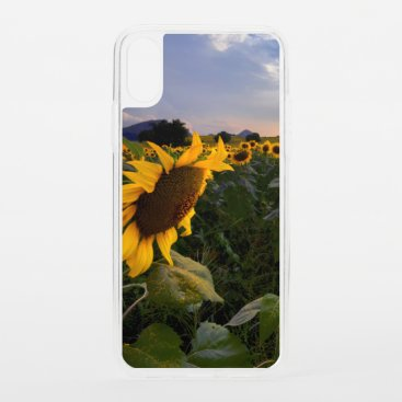 Field of Blooming Sunflowers iPhone XS Case