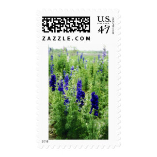 Field of Blue Postage Stamp