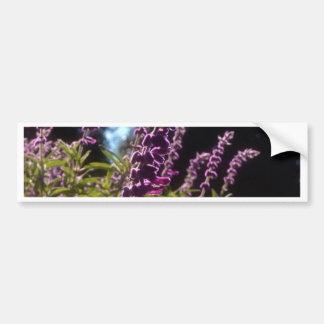 Field of Bog Sage Bumper Sticker