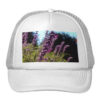 Field of Bog Sage Trucker Hat