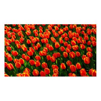 Field of Bright Orange Tulips - Watercolor Art Business Card