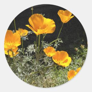 Field of CA Poppies Classic Round Sticker