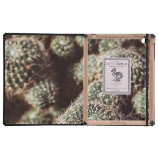 Field of Cacti, Warm Red Botanical Photograph iPad Folio Cases