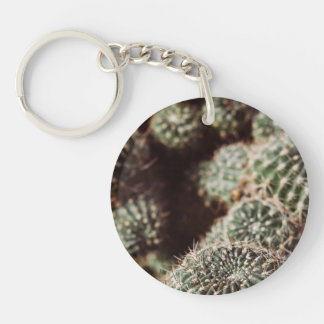 Field of Cacti, Warm Red Botanical Photograph Keychain