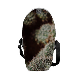 Field of Cacti, Warm Red Botanical Photograph Messenger Bags