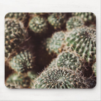 Field of Cacti, Warm Red Botanical Photograph Mouse Pad
