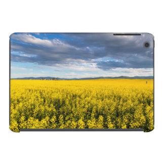 Field Of Canola In Late Evening Light iPad Mini Cover
