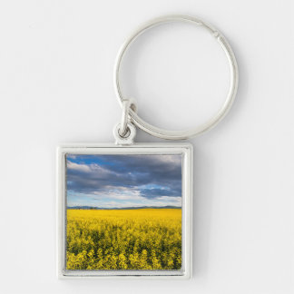 Field Of Canola In Late Evening Light Silver-Colored Square Keychain