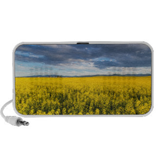 Field Of Canola In Late Evening Light Notebook Speakers
