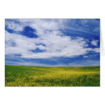 Field of Canola or Mustard flowers, Palouse Greeting Card