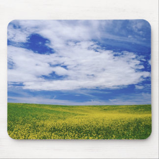 Field of Canola or Mustard flowers, Palouse Mouse Pad