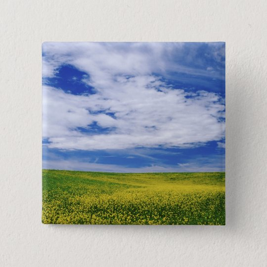 Field of Canola or Mustard flowers, Palouse Pinback Button