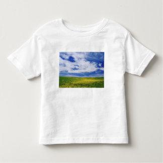 Field of Canola or Mustard flowers, Palouse T Shirt