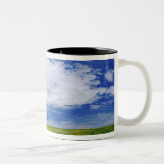 Field of Canola or Mustard flowers, Palouse Two-Tone Coffee Mug