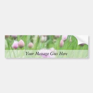 Field Of Chives In Flower Bumper Sticker