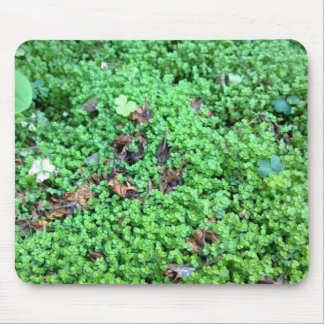 Field of Clovers Mouse Pad