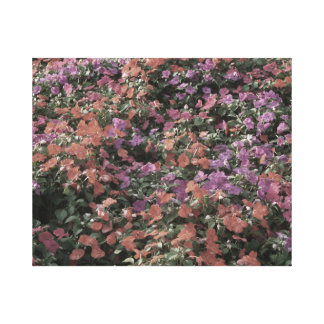 field of colored flowers faded plant photo canvas print