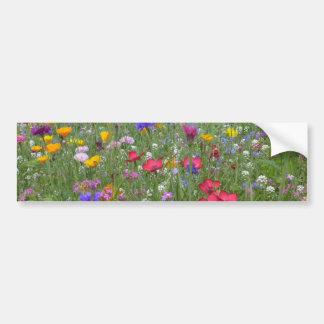 Field of Colorful Flowers Bumper Sticker