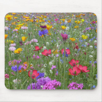Field of Colorful Flowers Mouse Pad