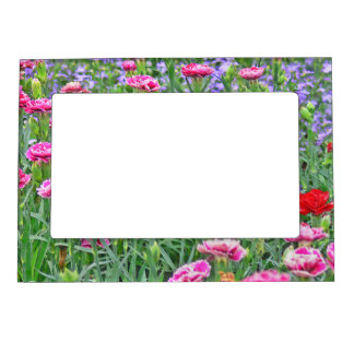 FIELD OF COLORFUL FLOWERS (PHOTOG) MAGNETIC PICTURE FRAME