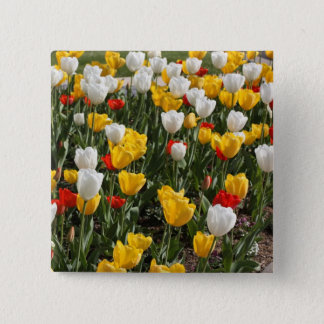 Field of colorful red white & yellow tulips pinback button
