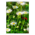 Field of Daisies Cards